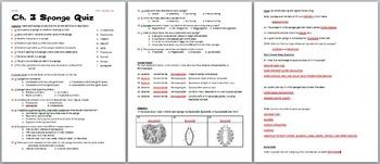 Biology / Zoology – Phylum Porifera (Sponges) Quiz