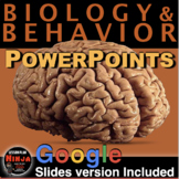 Biology and Behavior PowerPoint with Presenter Notes & Video Clips (Psychology)