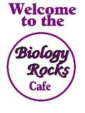 Biology bulletin board: Biology Rocks