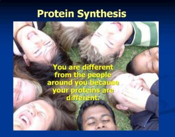 Biology powerpoint animation preview DNA Genetics Mitosis