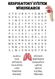 Biology word search Puzzle: The respiratory system (Includes answer key)