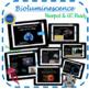 Bioluminescence: The Light of The Deep - Science Grades 5-8
