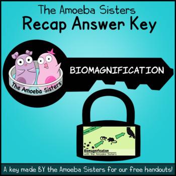 Biomagnification Answer Key by The Amoeba Sisters (Amoeba Sisters Answer Key)