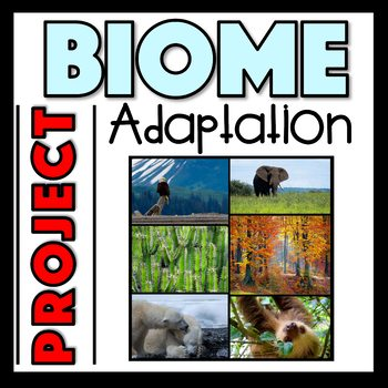 Biome Adaptation Activity