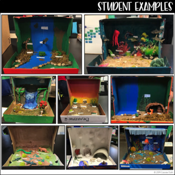 Biome Box - Project Based Learning (Science PBL)