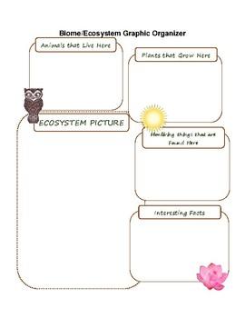 Biome/Ecosystems Graphic Organizer
