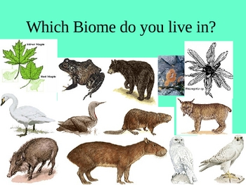 Biome PPT 7th Grade Life Science