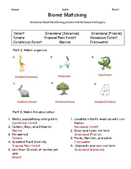Biome Review
