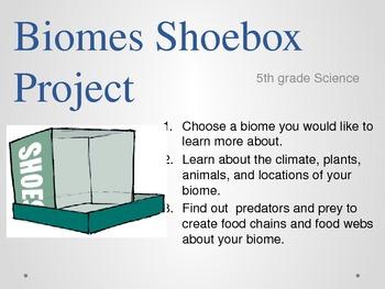 Biome Shoebox Project