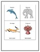 Biome Sort: Learning which animals go in which biome