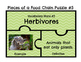 Biome and Food Chain Vocabulary Review