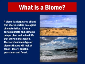 World Biomes PowerPoint | Biomes Activity