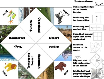 World Biomes Activity (Ecosystems Unit: Animal Habitats)