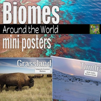 Biomes Around The World Mini Posters