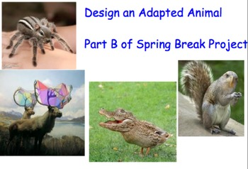 Biomes Brochure & Create an Adapted Animal Projects w/ Review Presentation