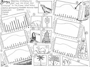Biomes Coloring sheet - climatogram, animal, plant