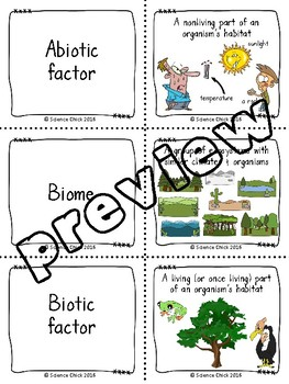Biomes Concentration Game