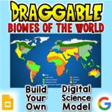 Biomes - Digital Draggable Science Model