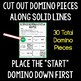 Biomes Domino Review