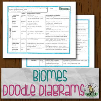 Biomes Doodle Diagrams