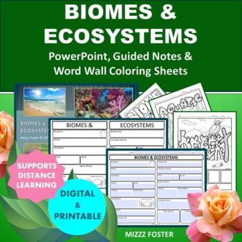 Biome Graphic Organizer Teaching Resources Teachers Pay Teachers
