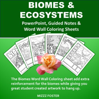 Biomes & Ecosystem Power point, Graphic Organizer, and Word Wall Sheets Bundle