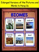 Biomes Interactive Notebook Flip-O-Rama