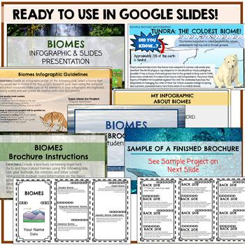 Biome brochure project sample