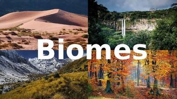 Biomes  Game