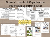 Biomes ~ Levels of Organization {includes quiz with answer key}
