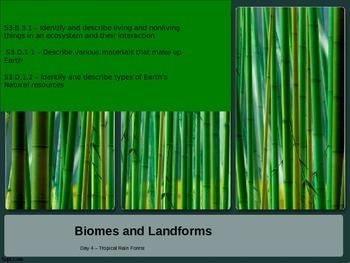 Biomes - Rainforest