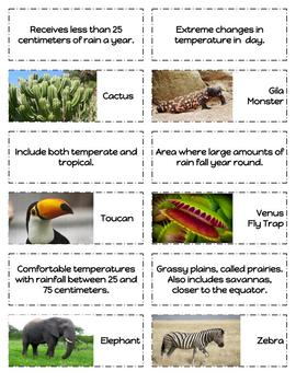 Biomes Sorting Cards