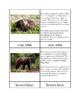 Biomes - Taiga Animals Three/Four Part Cards