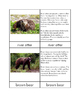 Biomes - Taiga Animals Three/Four Part Cards