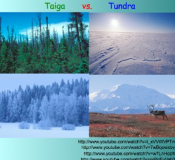 Biomes: Taiga & Tundra - Le... by jts23 | Teachers Pay Teachers