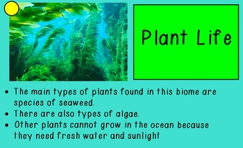 Biomes Unit
