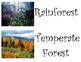 Biomes Word Wall Posters