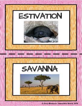 Biomes and Aquatic Ecosystems Word Wall Set with Spanish Tags