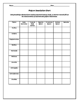 Biology! Taxonomy and Classification: Worksheets! | TpT