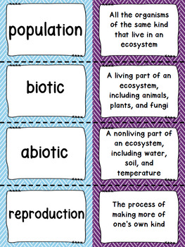 Biomes and Ecosystems Vocabulary Matching Activity