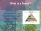 Biomes and Habitats eBook