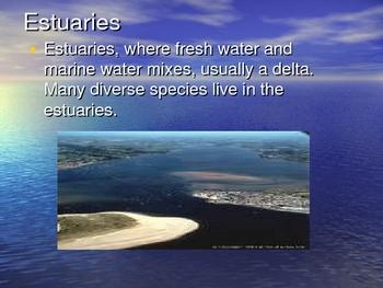 Biomes in Biology Powerpoint