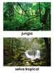 Biomes in Spanish - Biomas