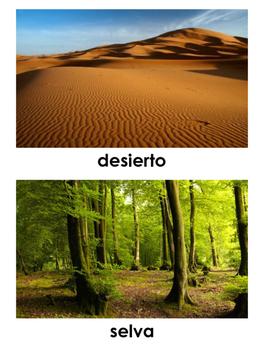Biomes in Spanish - Biomas