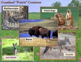 Biomes of the World - Power Point - Keene