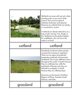 Biomes of the World - Three/Four Part Cards