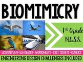 Biomimicry Lesson & Engineering Design Challenge - 1st Gra
