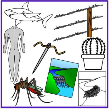 Biomimicry Clipart