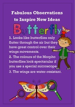 Biomimicry Fabulous Observations - Butterfly