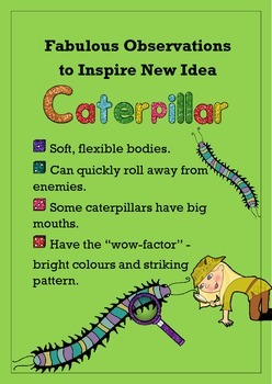Biomimicry Fabulous Observations - Caterpillar